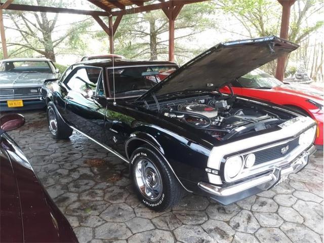 1967 Chevrolet Camaro (CC-1456835) for sale in Greensboro, North Carolina