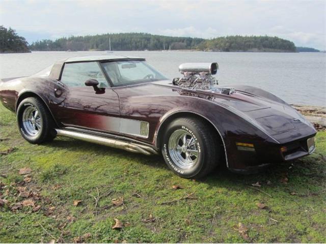 1980 Chevrolet Corvette (CC-1457567) for sale in Cadillac, Michigan