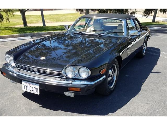1988 Jaguar XJSC (CC-1459292) for sale in Vista, California