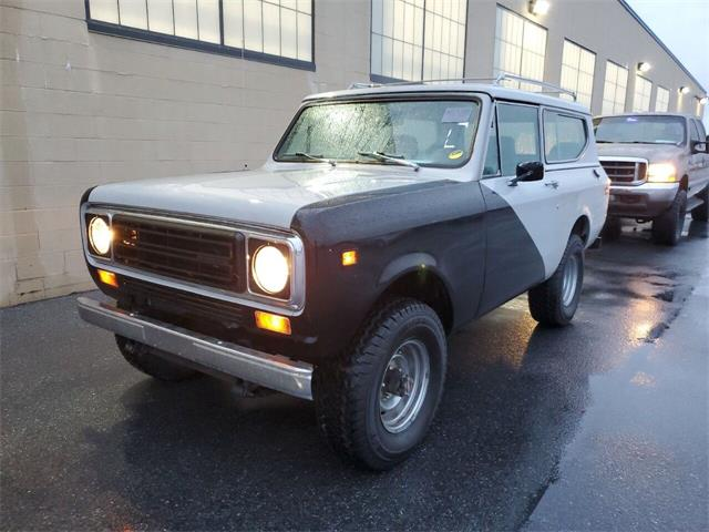 1979 International Harvester (CC-1459699) for sale in Hilton, New York