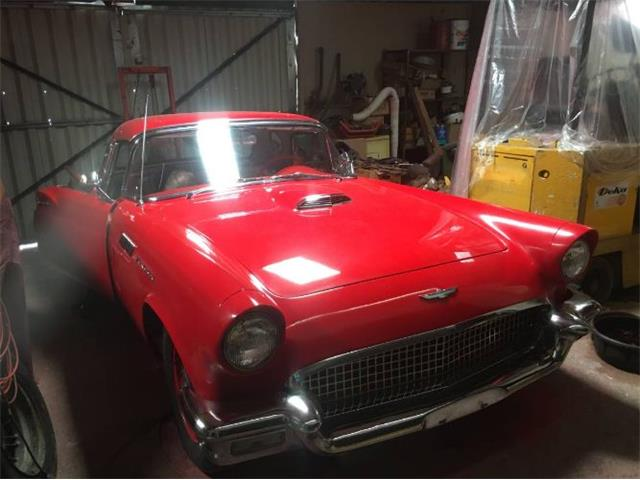1957 Ford Thunderbird (CC-1459982) for sale in Cadillac, Michigan