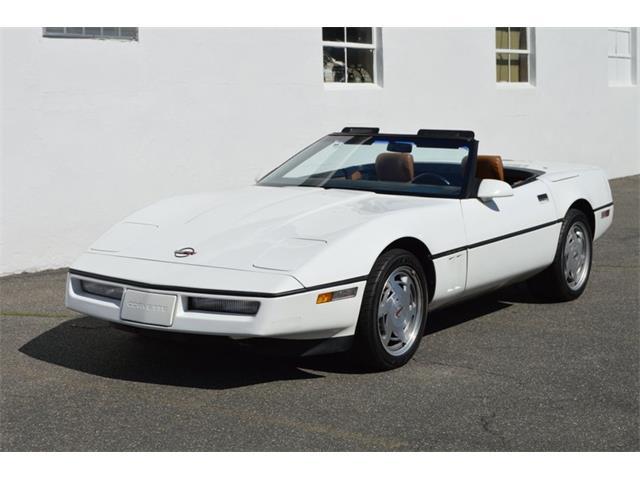 1989 Chevrolet Corvette (CC-1461147) for sale in Springfield, Massachusetts