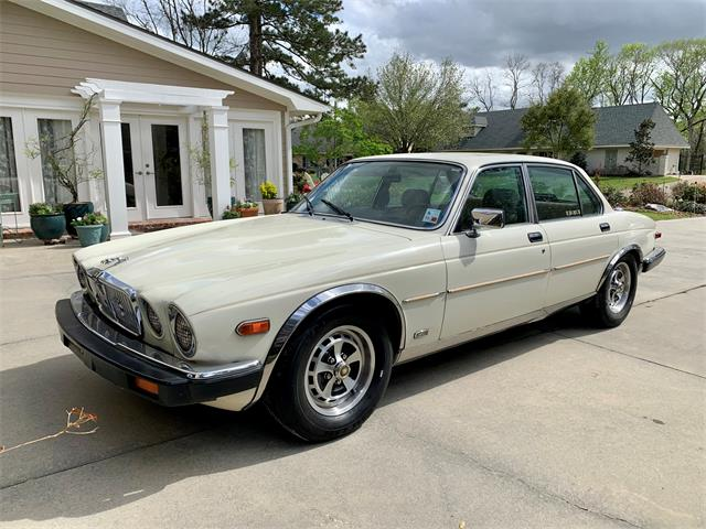 1987 Jaguar XJ6 (CC-1461301) for sale in Lafayette, Louisiana