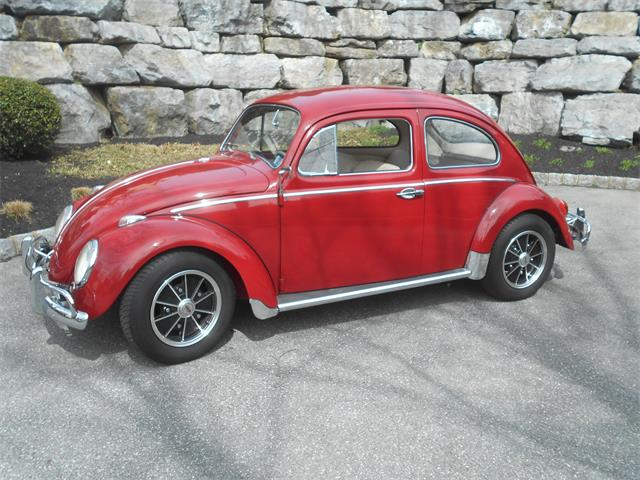 1961 Volkswagen Beetle (CC-1461690) for sale in Carlisle, Pennsylvania
