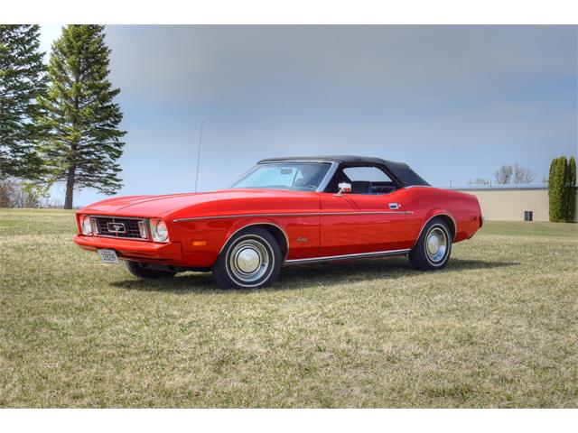 1973 Ford Mustang (CC-1463007) for sale in Watertown, Minnesota