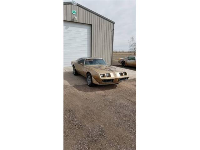 1979 Pontiac Firebird Trans Am (CC-1463708) for sale in Cadillac, Michigan