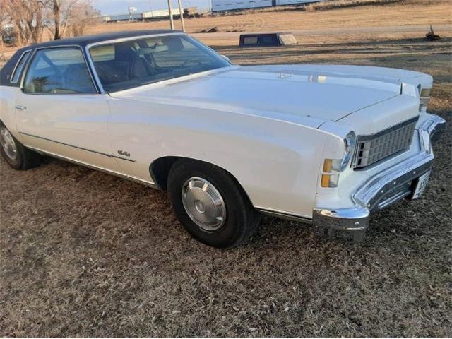 1973 Chevrolet Monte Carlo (CC-1464850) for sale in Cadillac, Michigan