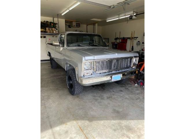 1976 Chevrolet K-10 (CC-1464873) for sale in Cadillac, Michigan
