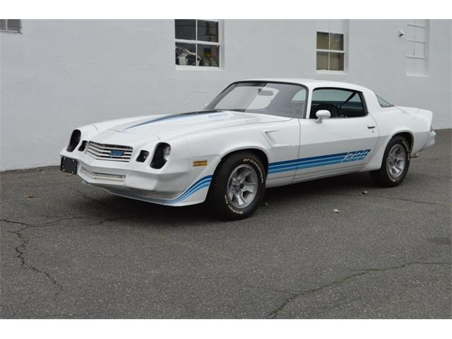1981 Chevrolet Camaro (CC-1465088) for sale in Springfield, Massachusetts
