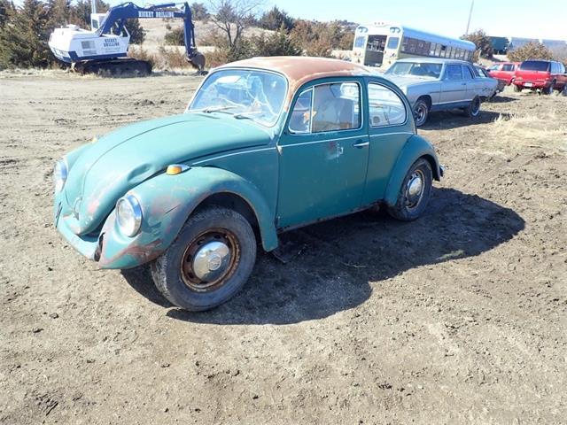 1969 Volkswagen Beetle (CC-1465606) for sale in www.bigiron.com,