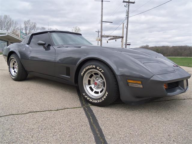 1981 Chevrolet Corvette (CC-1466105) for sale in JEFFERSON, Wisconsin