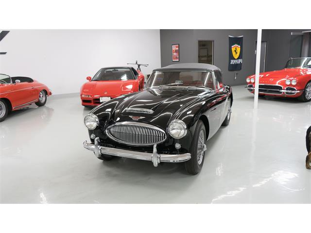 1964 Austin-Healey BJ8 (CC-1466527) for sale in Englewood, Colorado