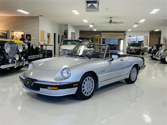 1987 Alfa Romeo Spider (CC-1466853) for sale in Phoenix, Arizona
