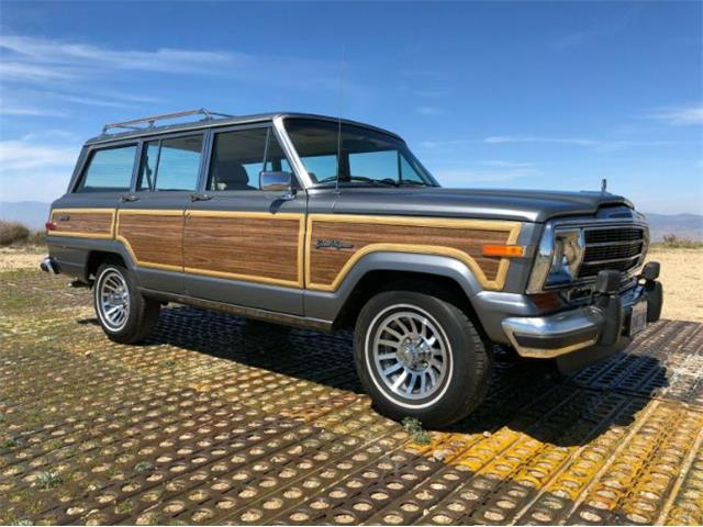 1991 Jeep Wagoneer (CC-1467163) for sale in Cadillac, Michigan