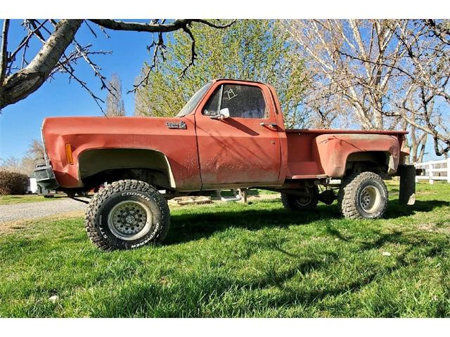 1979 Chevrolet 1/2 Ton Pickup (CC-1467647) for sale in Boardman, Oregon