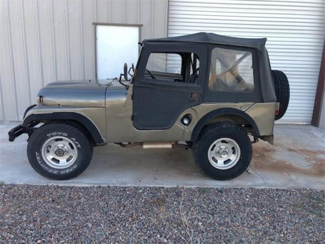 1959 Jeep Willys (CC-1460829) for sale in Cadillac, Michigan