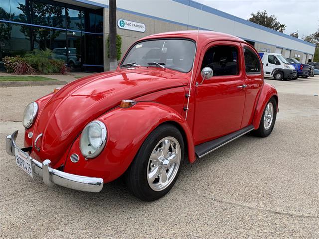 1964 Volkswagen Beetle (CC-1468410) for sale in Spring Valley, California
