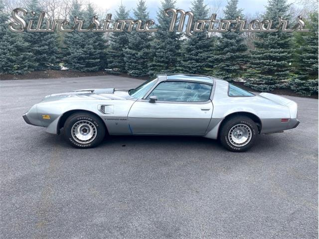 1979 Pontiac Firebird Trans Am (CC-1468763) for sale in North Andover, Massachusetts