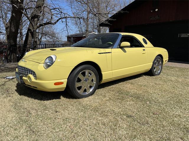 2002 Ford Thunderbird (CC-1469012) for sale in Detroit Lakes, Minnesota