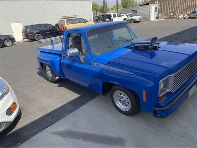 1978 Chevrolet C10 (CC-1469108) for sale in Cadillac, Michigan