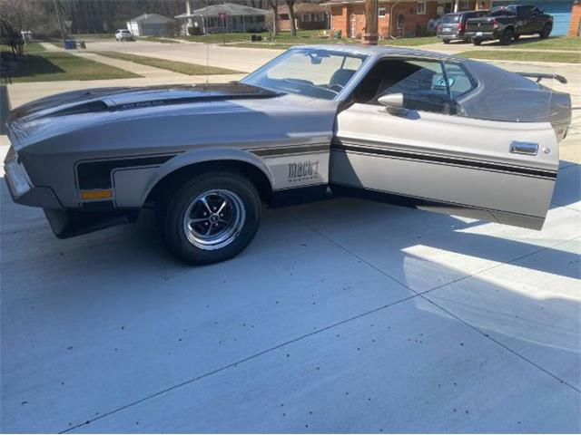 1971 Ford Mustang (CC-1469120) for sale in Cadillac, Michigan