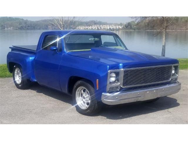 1976 Chevrolet C10 (CC-1469133) for sale in Cadillac, Michigan
