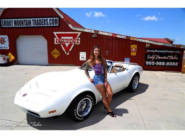 1974 Chevrolet Corvette (CC-1469536) for sale in Lenoir City, Tennessee
