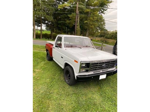 1982 Ford F100 (CC-1472517) for sale in Cadillac, Michigan