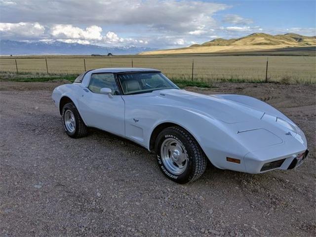 1979 Chevrolet Corvette (CC-1472526) for sale in Cadillac, Michigan