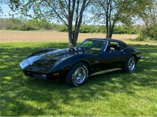 1973 Chevrolet Corvette (CC-1473142) for sale in Cadillac, Michigan