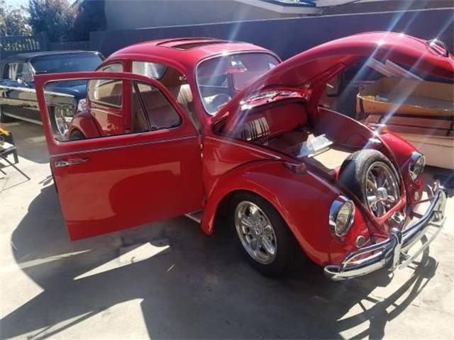 1967 Volkswagen Beetle (CC-1473196) for sale in Cadillac, Michigan