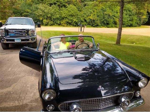 1955 Ford Thunderbird (CC-1473202) for sale in Cadillac, Michigan