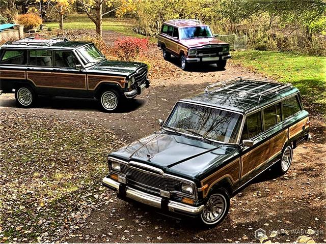1984 Jeep Grand Wagoneer (CC-1473452) for sale in BEMUS POINT, New York