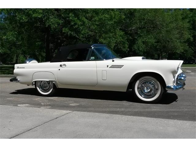 1956 Ford Thunderbird (CC-1470396) for sale in Lafayette, Louisiana
