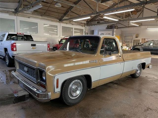 1973 Chevrolet C-Series (CC-1474493) for sale in Cadillac, Michigan