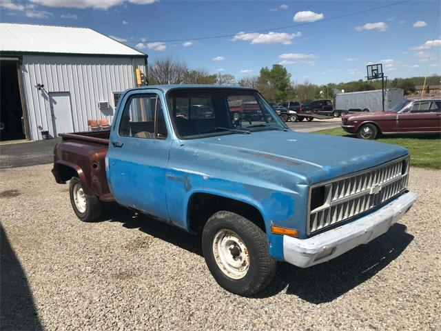 1981 Chevrolet C/K 10 (CC-1475127) for sale in Knightstown, Indiana