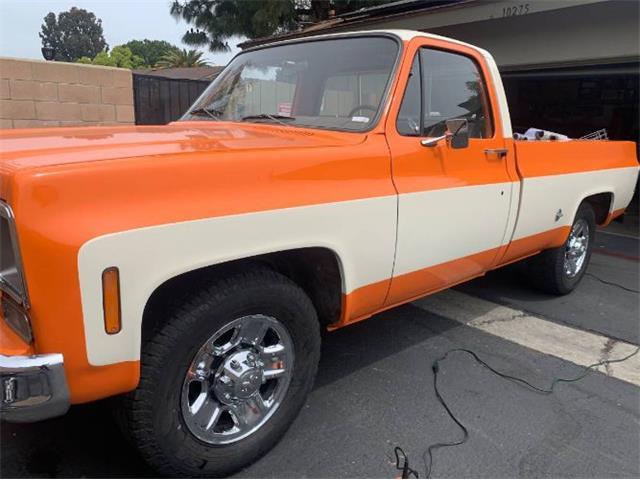 1975 Chevrolet C20 (CC-1475338) for sale in Cadillac, Michigan