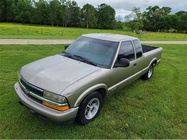 1998 Chevrolet S10 (CC-1477266) for sale in Cadillac, Michigan