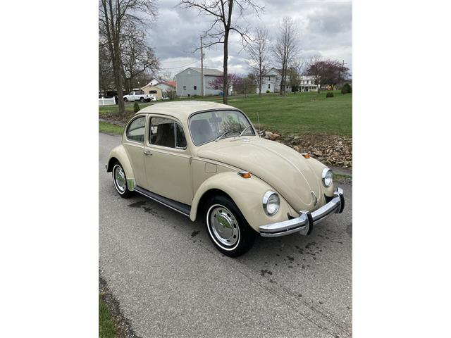 1969 Volkswagen Beetle (CC-1470763) for sale in Osterburg , Pennsylvania