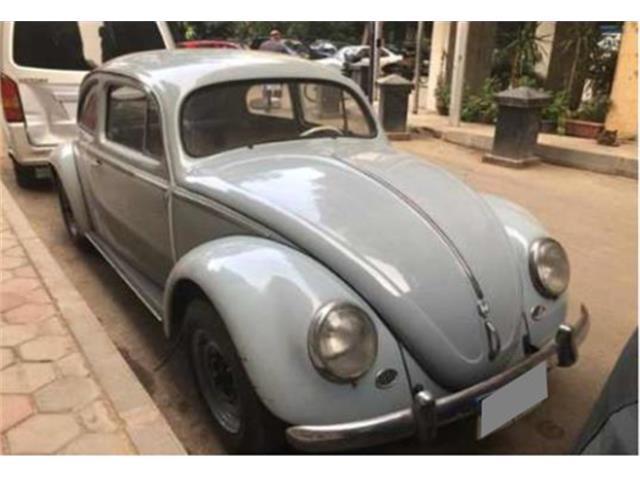 1953 Volkswagen Beetle (CC-1481764) for sale in Antwerpen, Belgium