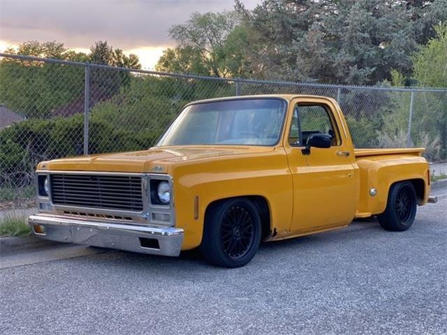 1979 Chevrolet C10 (CC-1480196) for sale in Cadillac, Michigan