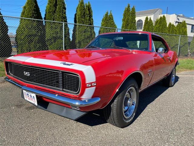 1967 Chevrolet Camaro (CC-1482432) for sale in Milford City, Connecticut