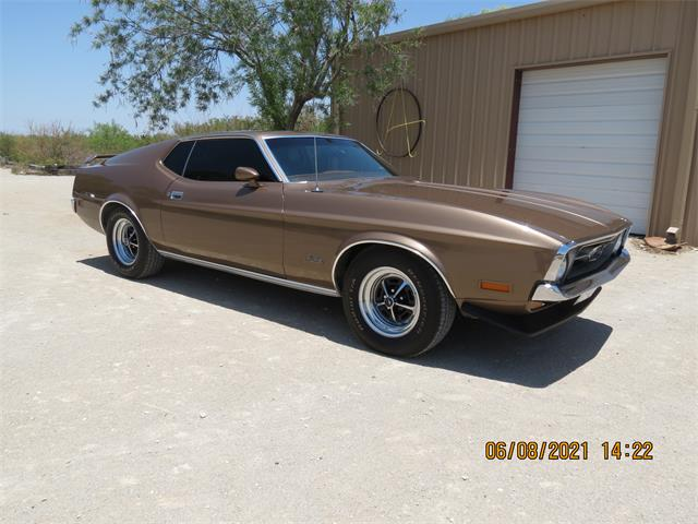 1971 Ford Mustang (CC-1482972) for sale in FORT STOCKTON, Texas