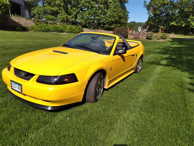 1999 Ford Mustang GT (CC-1482999) for sale in Zimmerman, Minnesota