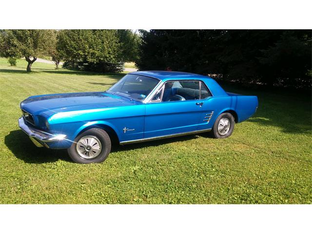 1966 Ford Mustang (CC-1483367) for sale in Forestville, New York