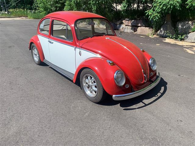 1966 Volkswagen Beetle (CC-1483589) for sale in Annandale, Minnesota