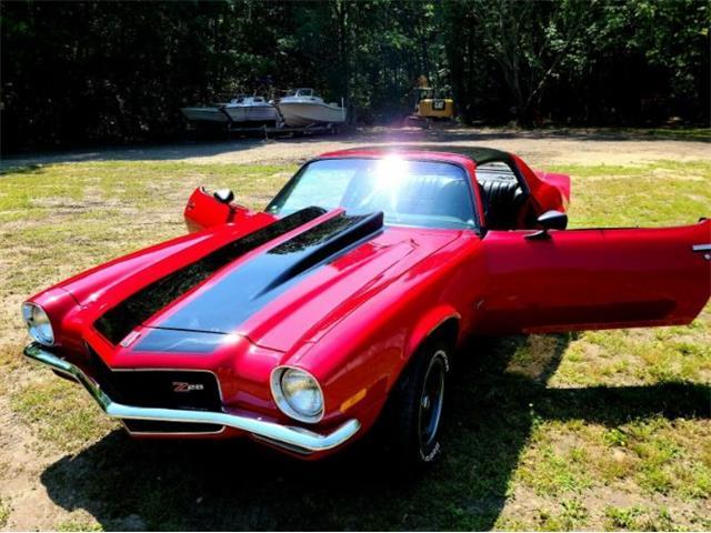 1973 Chevrolet Camaro (CC-1484383) for sale in Cadillac, Michigan