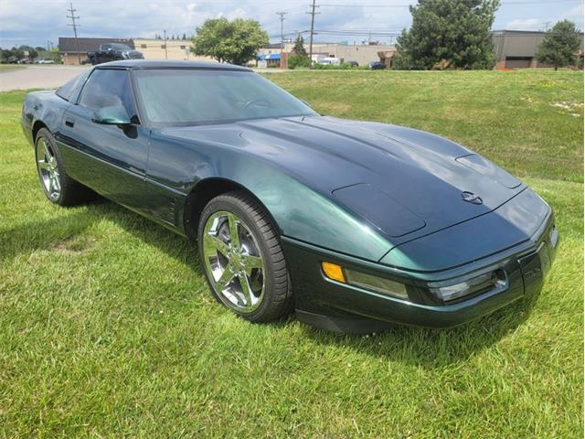 1995 Chevrolet Corvette (CC-1484442) for sale in Troy, Michigan