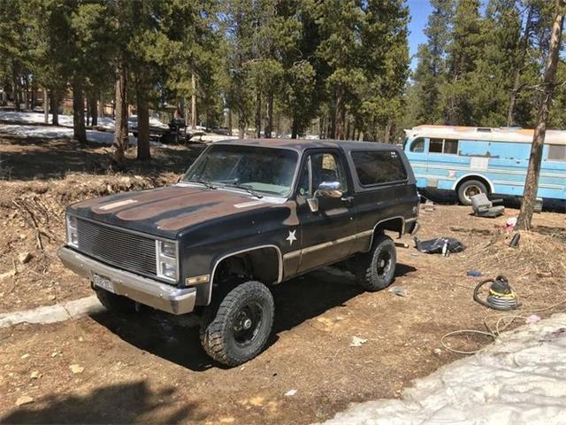 1985 Chevrolet Blazer (CC-1484674) for sale in Cadillac, Michigan