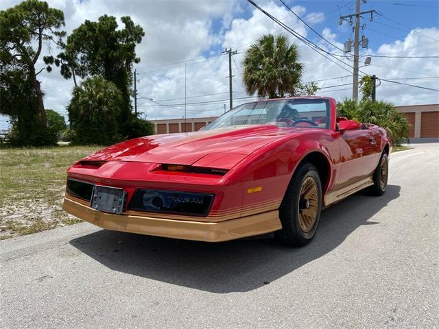 1984 Pontiac Firebird Trans Am (CC-1480509) for sale in Pompano Beach, Florida